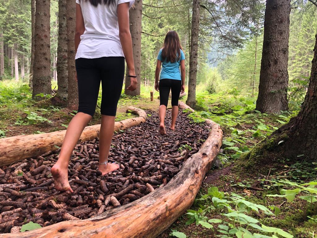 Sognare Di Camminare Scalzi come in una favola: la magia di camminare a piedi nudi nel bosco