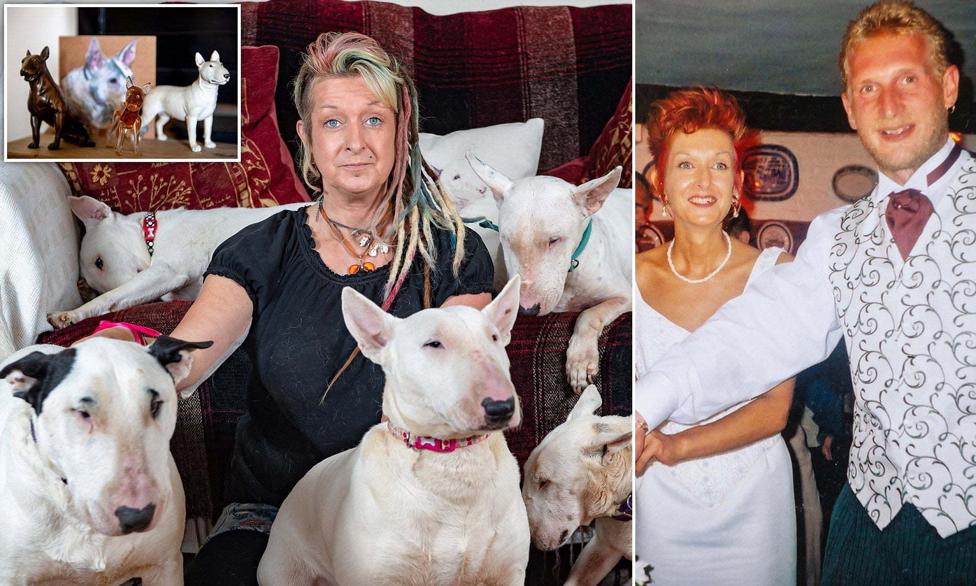 Chiede alla moglie di scegliere tra lui o i cani: si separano