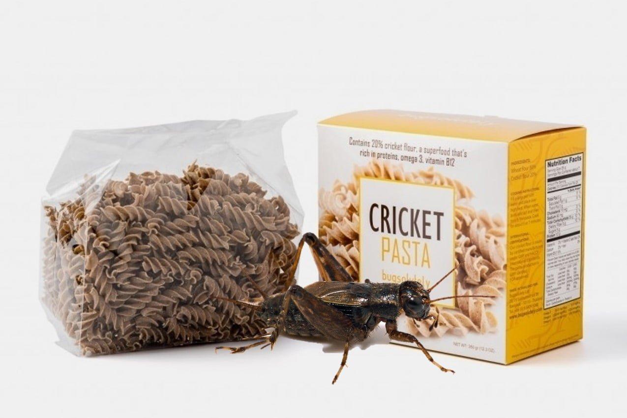 La pasta con farina di insetti: per un pasto mostruosamente buono!